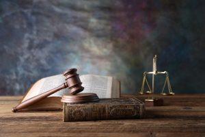 prawnik toruń adwokat z torunia alimenty długi